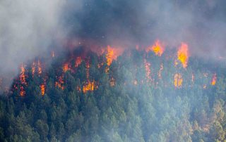 Wildfire detection tech